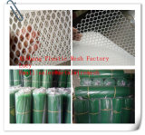 플라스틱 편평한 그물로 잡는 /Green 색깔 PP Hebei 공장