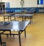 Le PVC de ping-pong folâtre la vente chaude de la surface 2017 de plancher