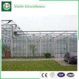 花システムのためのSilidingの単一のドアが付いているポリカーボネートの温室