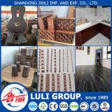 Exportación de madera dirigida al mercado de la India