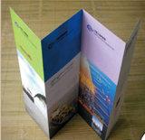 Documento di arte lucido di alta qualità che fa pubblicità agli opuscoli dell'aletta di filatoio A4 più