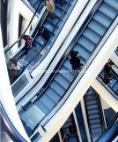 Escalera móvil resistente comercial al aire libre de interior de Vvvf