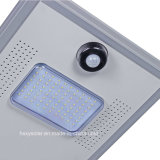 Hot Sale Product 6W-120W Luminárias solares de alta luz LED Street Lights Sensor de movimento