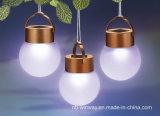 Lumières solaires rondes de jardin du prix bas DEL de modèle d'ampoule