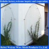 Sistema inoxidable de la cuerda de acero para la planta verde