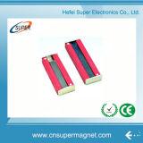 Горячее Sale Various Shape Ainico Magnet
