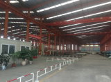 Atelier personnalisé de structure métallique de modèle (SS-323)