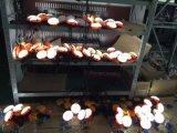 Lampada di mano solare dell'indicatore luminoso della lettura della Tabella LED dello scrittorio di alta qualità dalla fabbrica di iso