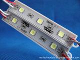 Seis módulo do diodo emissor de luz das cores IP65 SMD para anunciar