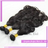 Trama brasileira do cabelo do Virgin humano natural de Remy da onda