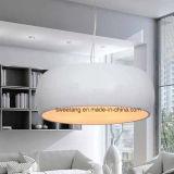 Zhonshan Zubehör-moderner Innenleuchter-hängende Beleuchtung im Aluminium