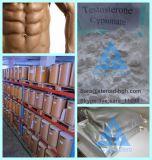 Testoterone personalizzato Cypionate della polvere dello steroide anabolico per i Bodybuilders