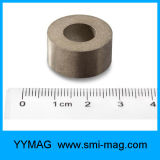いろいろな種類SmCoの強い常置磁石