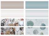 material de construcción interior del azulejo de la pared del suelo de la venta caliente de 300X900m m para la decoración casera