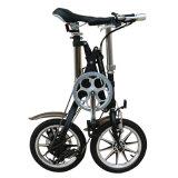 7 Geschwindigkeits-schnelle faltende Fahrräder mit 14 Zoll im Kohlenstoffstahl