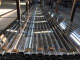 Série en aluminium de polissage de profil d'extrusion de vente chaude de machine