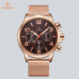 Relógio impermeável 72779 do cronógrafo dos homens do relógio de quartzo do esporte da forma do Wristband do aço inoxidável