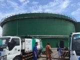 Biogas di assorbimento chimico che aggiorna sistema/il sistema decarburazione del biogas