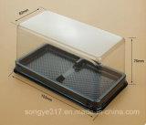Прозрачная квадратная коробка волдыря торта