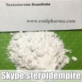 Testosterona esteroide Bodybuilding Enanthate del grado de Pharma del polvo del suplemento