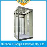 Ascenseur de villa de Fushijia avec l'acier inoxydable et le projecteur de miroir