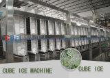 5 toneladas de máquina industrial do cubo de gelo para comestível