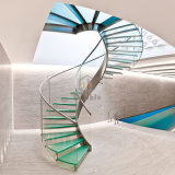 Fabricantes de la escalera/escalera de acero moderna de la escalera espiral con la escalera del pasamano del acero inoxidable