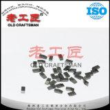 Le Cimenter-Carbure de K10 K20 a vu l'extrémité pour des couteaux de disque