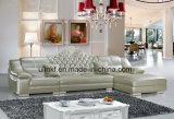 Самомоднейшая живущий софа отдыха мебели комнаты (HX-FZ045)
