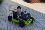 Ce/EPA에 의하여 승인된 소형 지프는 2 륜 마차 아이를 위한 Kart 간다 또는 법 도로는 Kart 간다
