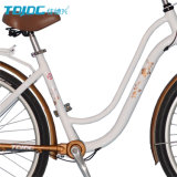 Tdjdc reizend Entwurfs-Stadt-Fahrrad-/Dame-Arbeitsweg-Freizeit-Fahrrad