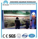 Precio de acrílico transparente modificado para requisitos particulares del tarro de los pescados