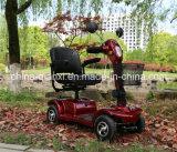 Fabrik-Preis-behindertes Auto mit Cer