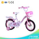 Le modèle de mode badine le vélo d'enfants de jouet