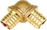 A seda do dente dentro do encaixe de cotovelo