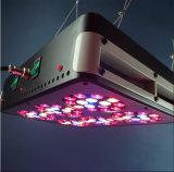 La energía hidraúlica de la planta del LED crece ligera con diversos casos del color (Apolo 6)