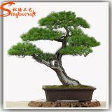 실내 인공적인 섬유유리 소나무 Bonsai 장식 정원 프레임 식물 판매