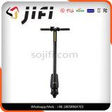Individu pliable équilibrant le scooter électrique de coup-de-pied avec l'Afficheur LED