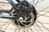 36V 250W Pedal-behilfliches Fahrrad mit e-Fahrrad-Naben-Motor