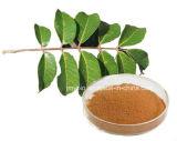 Горячее надувательство обрабатывая Oleuropein 20% сердечнососудистым заболеванием, 40%, выдержка листьев 60% прованская