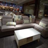 Meubles de chambre à coucher d'hôtel de sofa de tissu de salle de séjour de modèle moderne - Fb1113