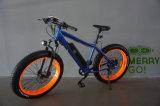 Vélo électrique de croiseur de plage de qualité et pneu facile d'équitation de gros avec le moteur arrière
