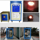 Mini fornace del riscaldamento di induzione di IGBT per la fusione d'argento dell'oro