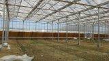 bride en aluminium de projection de 1000mm de tente de parasols