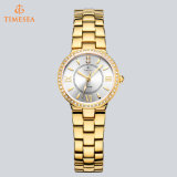Lady Stainless Steel Waterproof Jewelry Watch with Sapphire Glass 71193