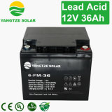 Batterie de la plaque 12V 36ah de batterie d'acide de plomb