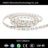 30LEDs/M 7.2W 24V/12V 5050 LEDのストリップ
