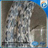 Short Blava Galv Razor Wire