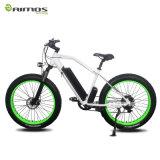 4.0 Bicicletta elettrica della bici della gomma grassa, E-Bici