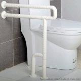 De Handicap van de badkamers staat de Staven van het Nylon & van het Roestvrij staal bij